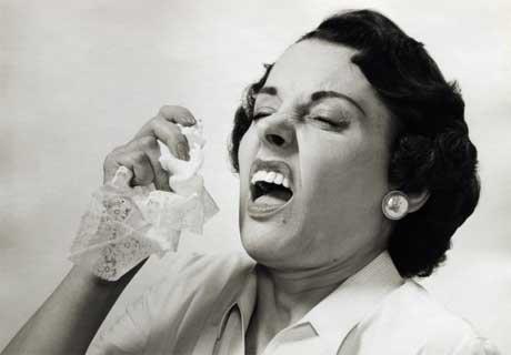 sneeze.article